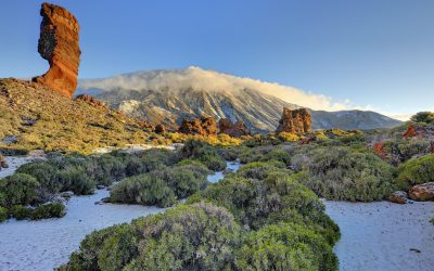 Islas Canarias. Convocatoria EE.MM. 2021.